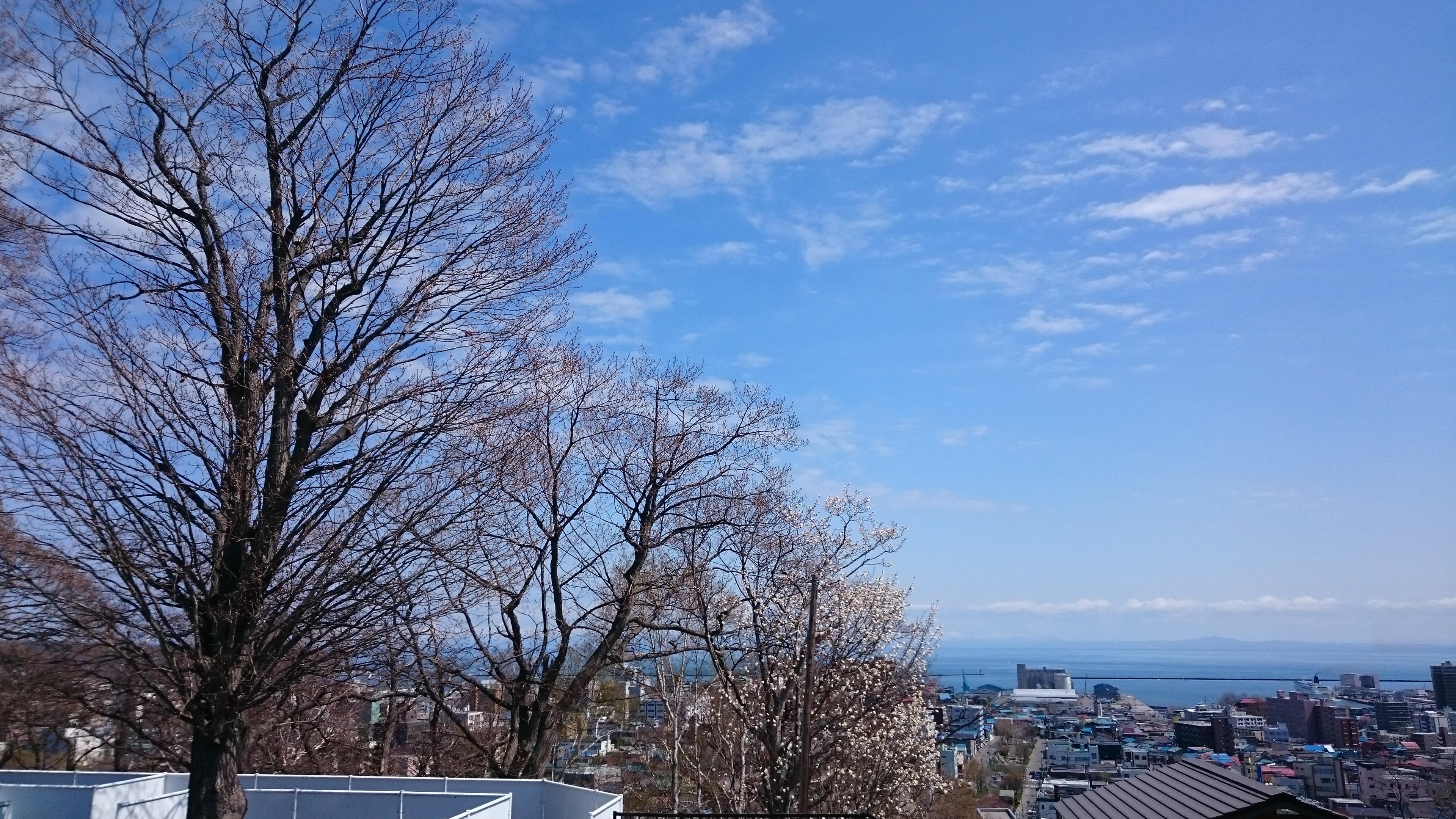春の陽気の小樽