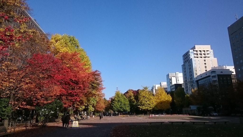 大通公園も色鮮やか